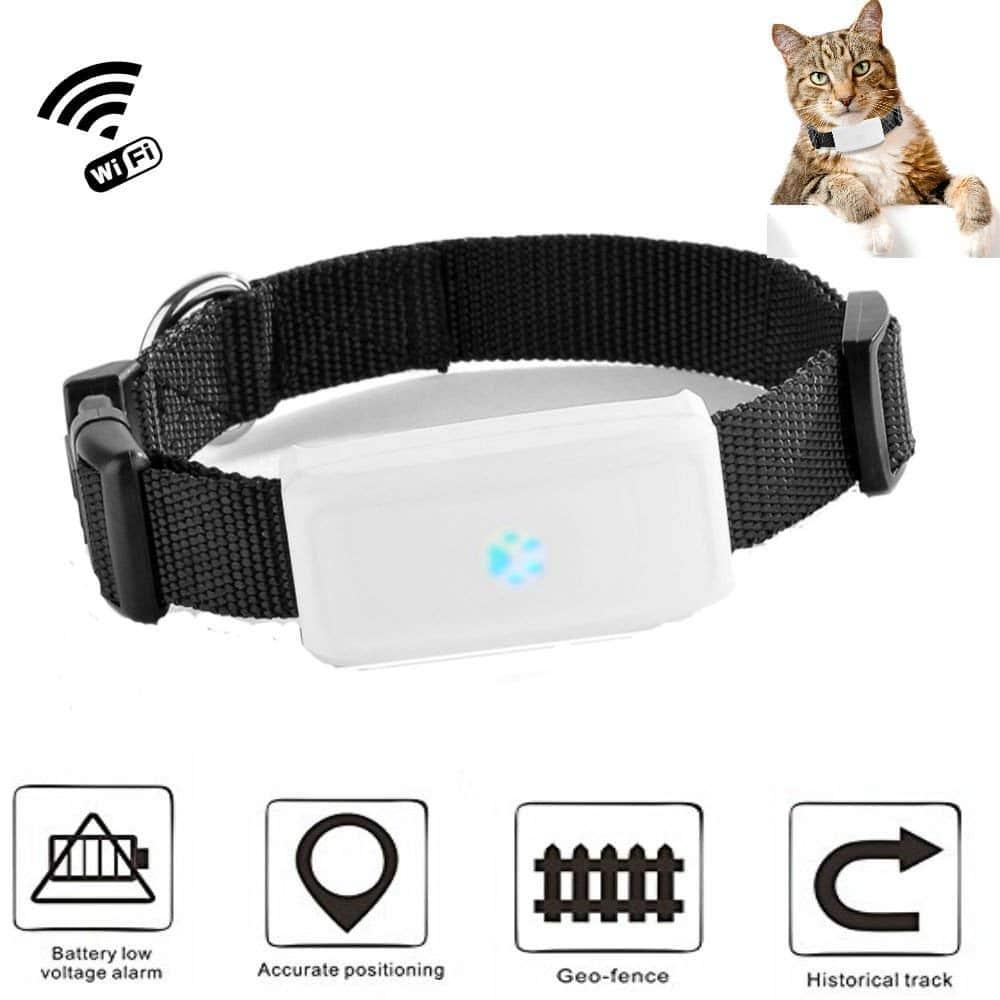Quel collier GPS pour chien? Notre guide!